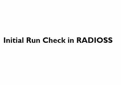 3-Initial Run checks for RADIOSS